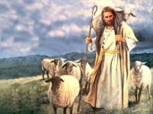 jesus_sheep